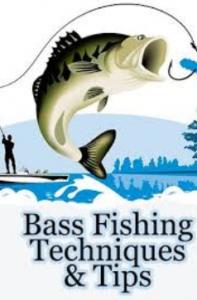 Bass Fishing Secrets & Tips
